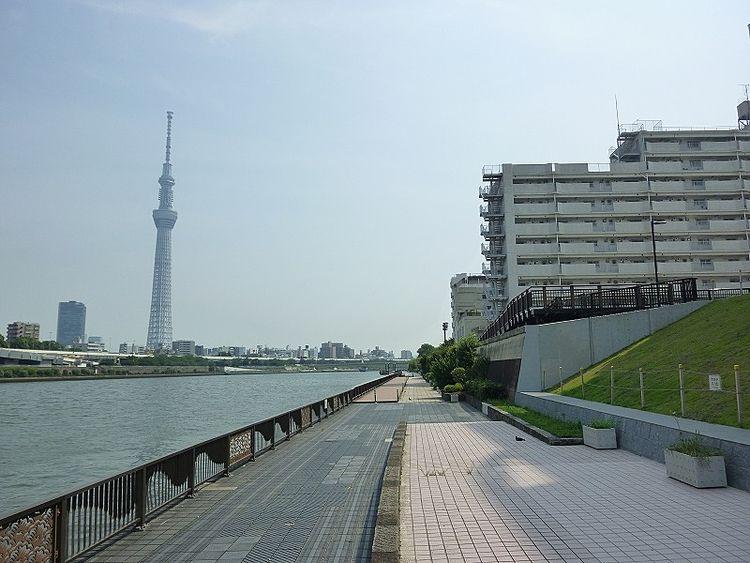 浅草ロイヤルマンション裏の隅田川テラスです。