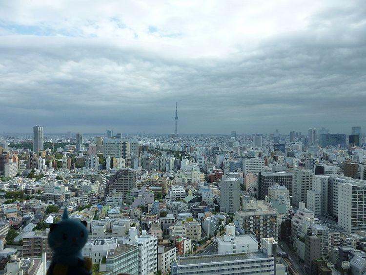 台東区の日中を鳥瞰した写真です。