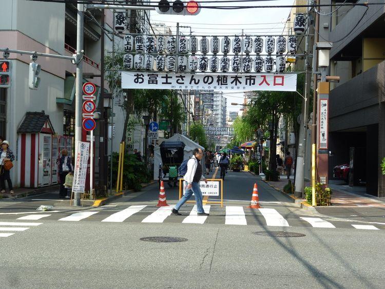 お富士さんの植木市入口