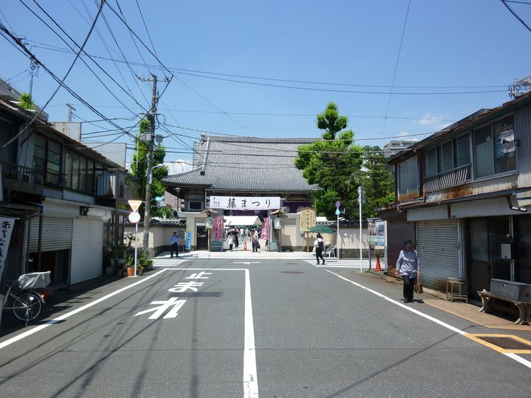 東本願寺、藤まつり