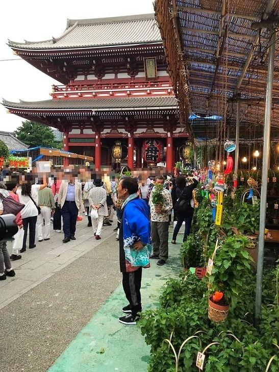 アートライフで、2019年7月9日・10日に浅草寺で行われる四万六千日・ほおづき市を紹介します。