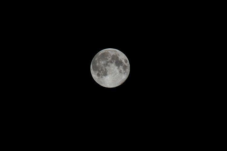【令和元年】観月の調べ【石浜神社境内コンサート】