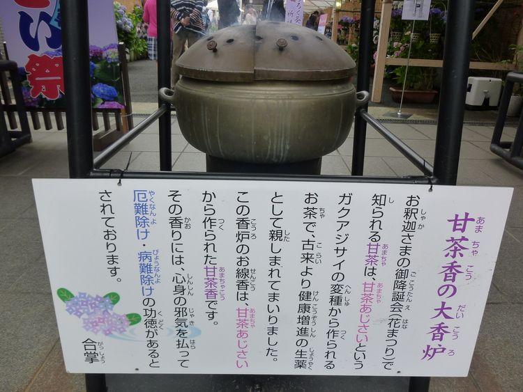 長國寺いきいきあじさい祭