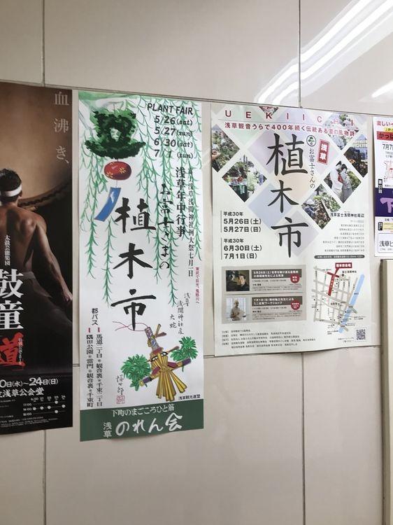 浅草浅間神社、植木市のポスターです。