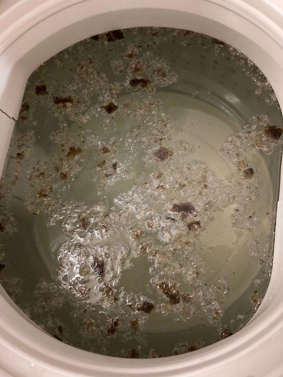 オキシクリーンで洗濯槽洗浄をした際の、洗濯槽の様子です。