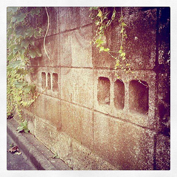 ブロック塀アップの写真です。