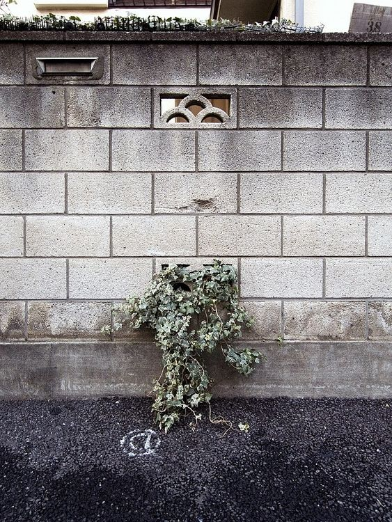 ブロック塀を正面から撮った写真です。
