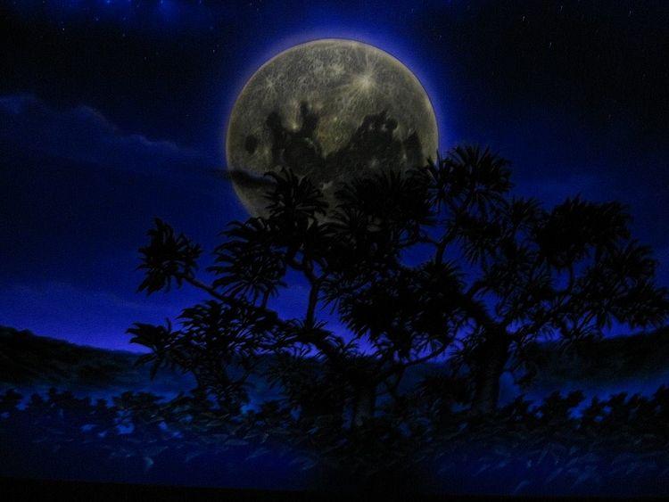 暗闇に大きな満月が浮かぶ写真です。