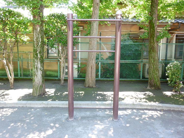 台東区蔵前4丁目にある精華公園の、ぶら下がり健康器の写真です。