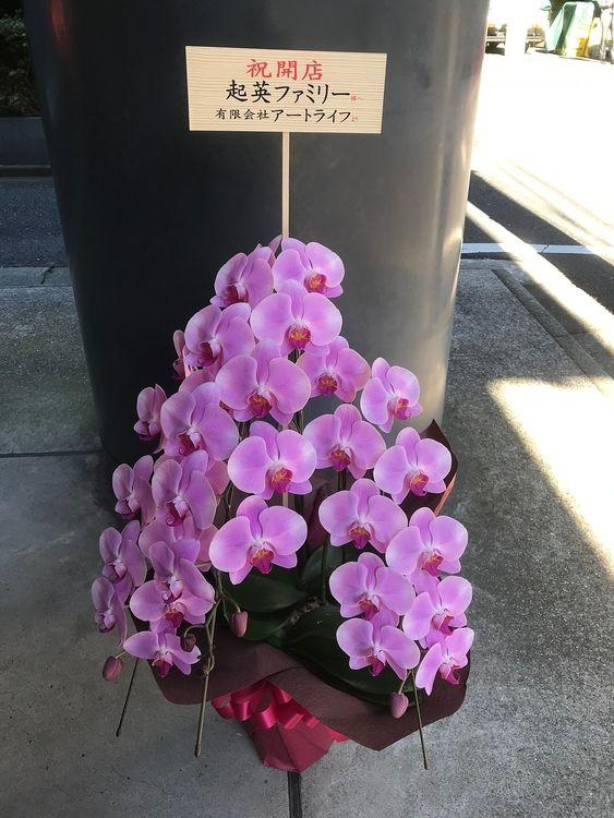 台東区上野1丁目にある、起英ファミリーに贈った胡蝶蘭の写真です。